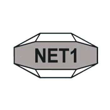 NET1.jpg