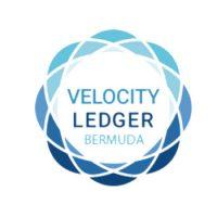 Velocity Ledger 350.jpg